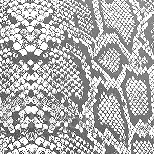 swatches/swatch-snakeskin-white.png