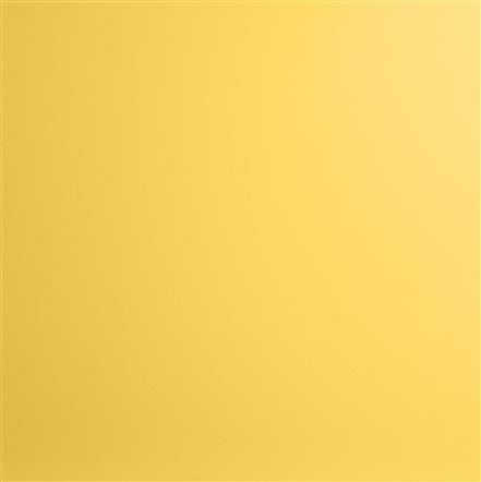 swatches/swatch-yellow.jpg